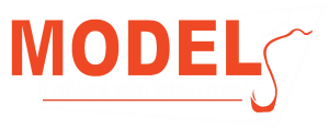 model liquor distributors logo png